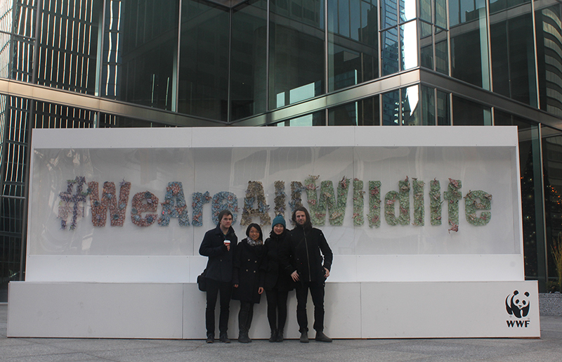PULP Artists In Front of WWF # WeAreAllWildlife Origami Installation.